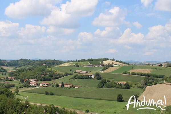 colline del Monferrato di Castell'Alfero