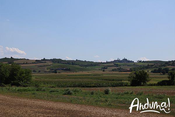 colline del Monferrato