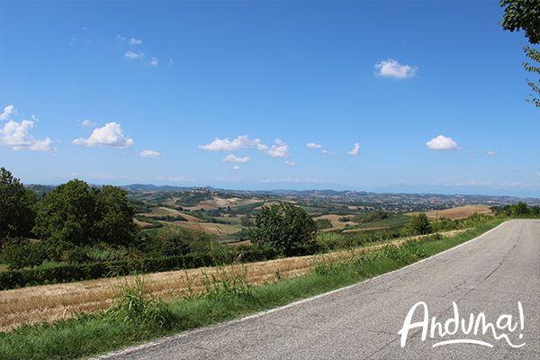 campagna Lu Monferrato