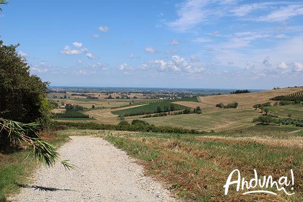 colline Lu Monferrato