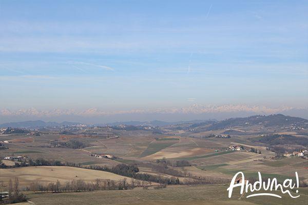 belvedere Melvin Jones di Vignale Monferrato