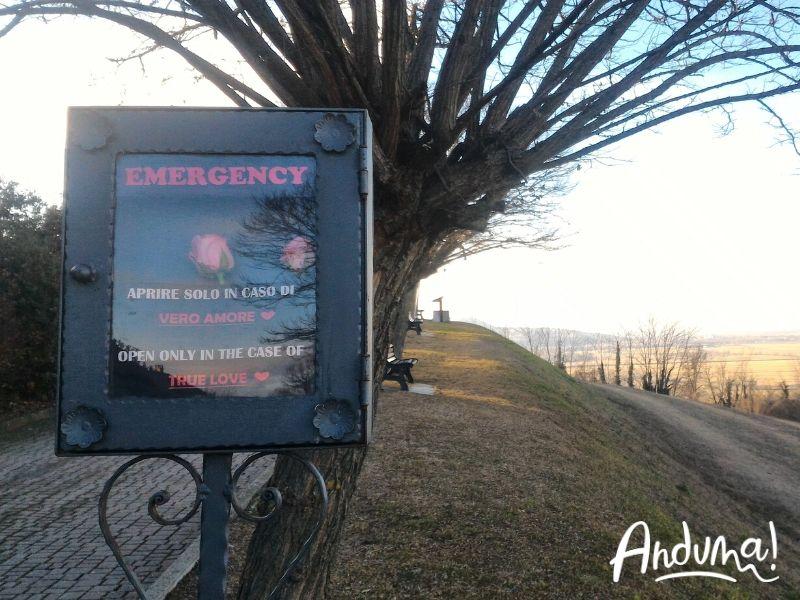 belvedere monferrato coniolo