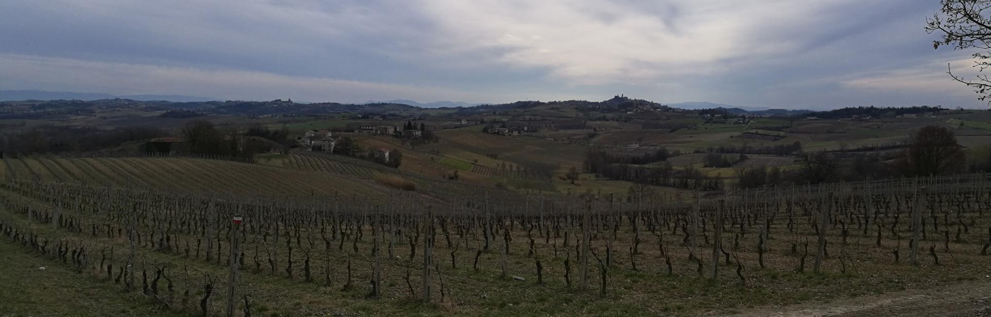 itinerari-rosignano-monferrato-cellamonte