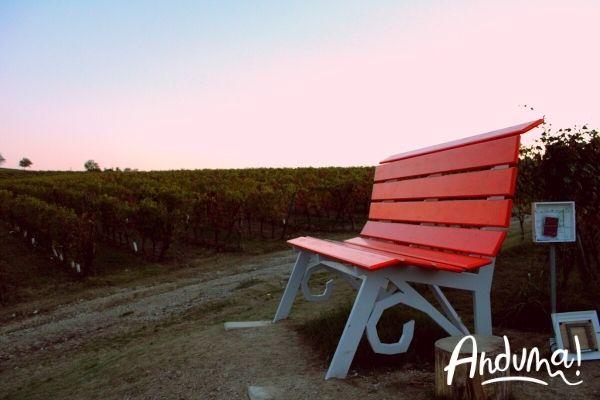 big bench vignale monferrato