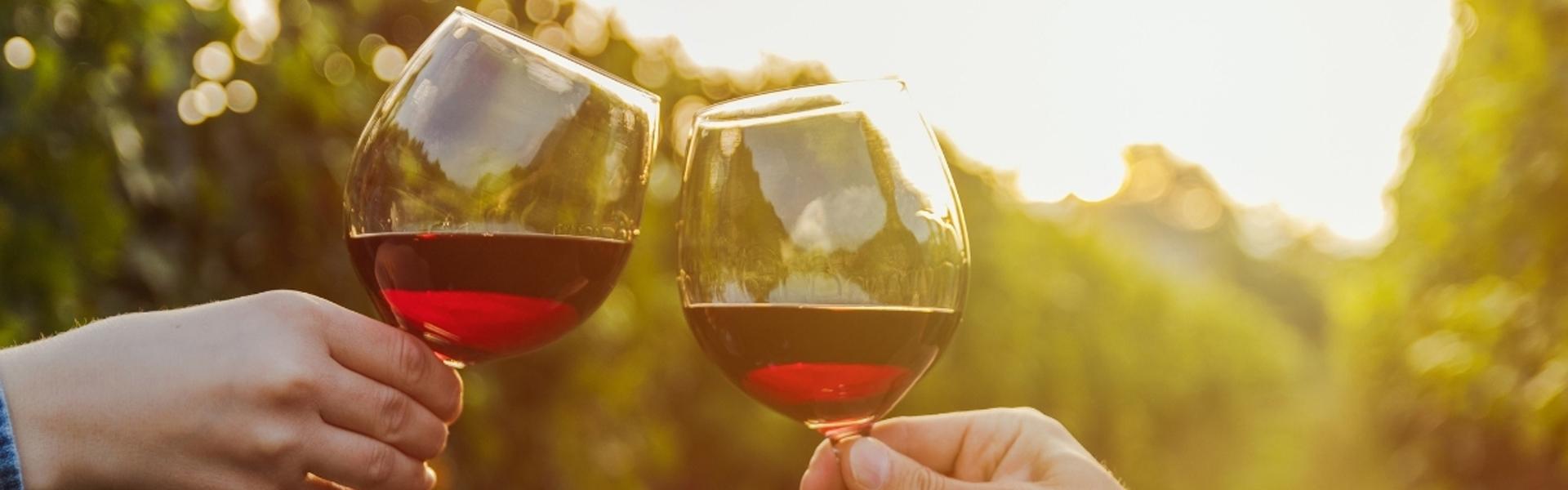 calici di vino rosso in vigna