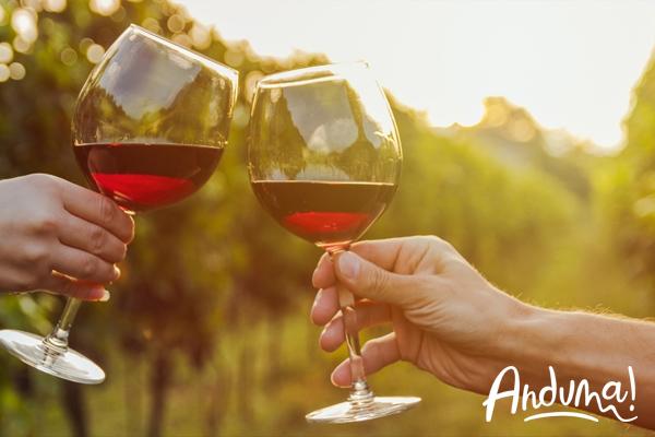 brindisi con vino rosso
