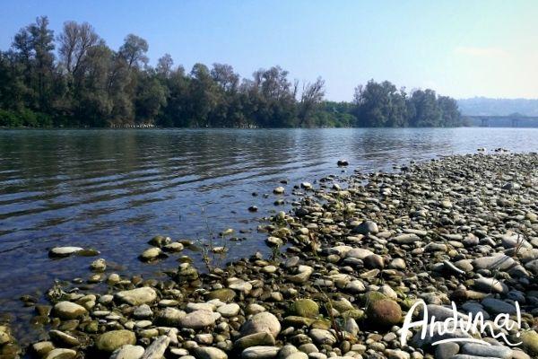 riva del fiume po nel monferrato