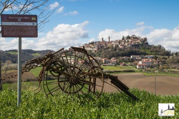 attrezzi agricoli tra le colline del monferrato