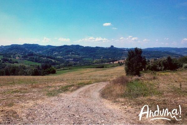 sentiero panoramico sulle colline del monferrato casalese