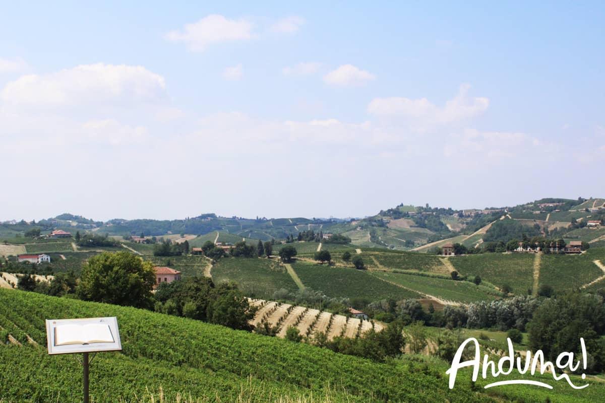 Cantine Nizza Monferrato