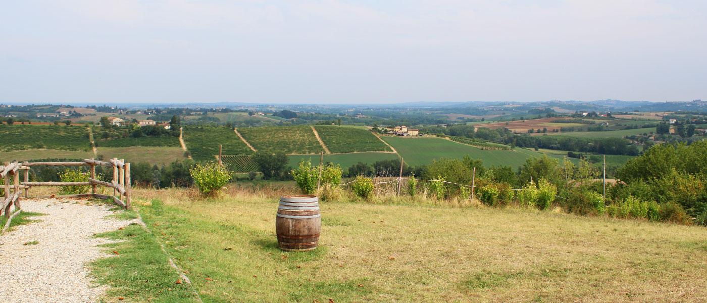 colline di moleto monferrato