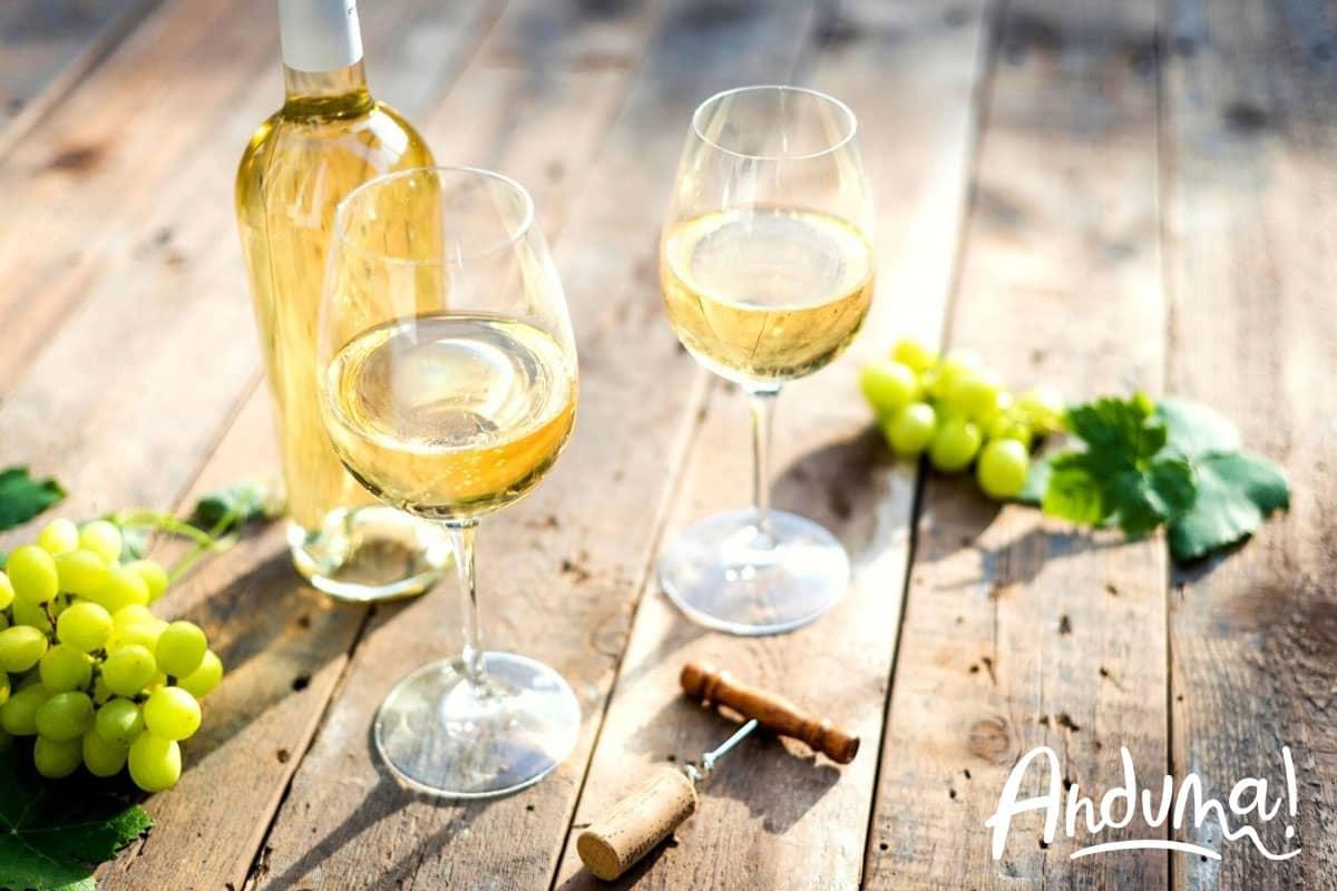 vino gavi docg monferrato