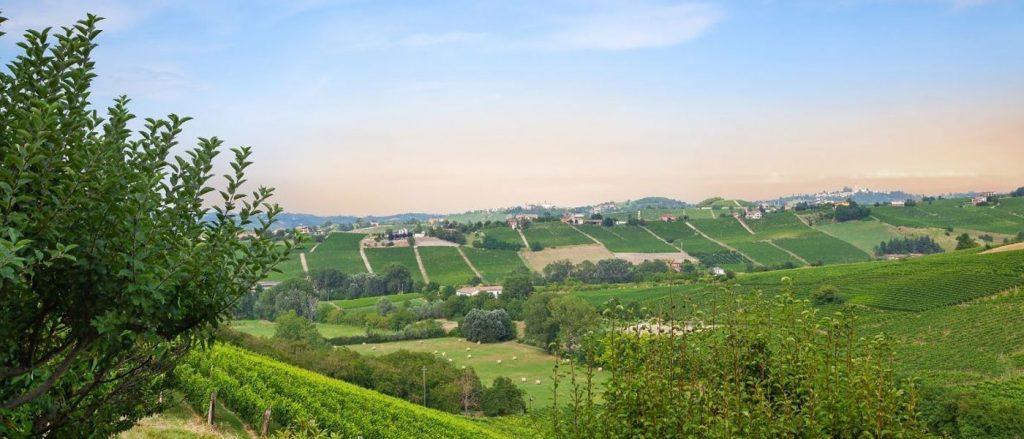 panorama sulle colline del monferrato