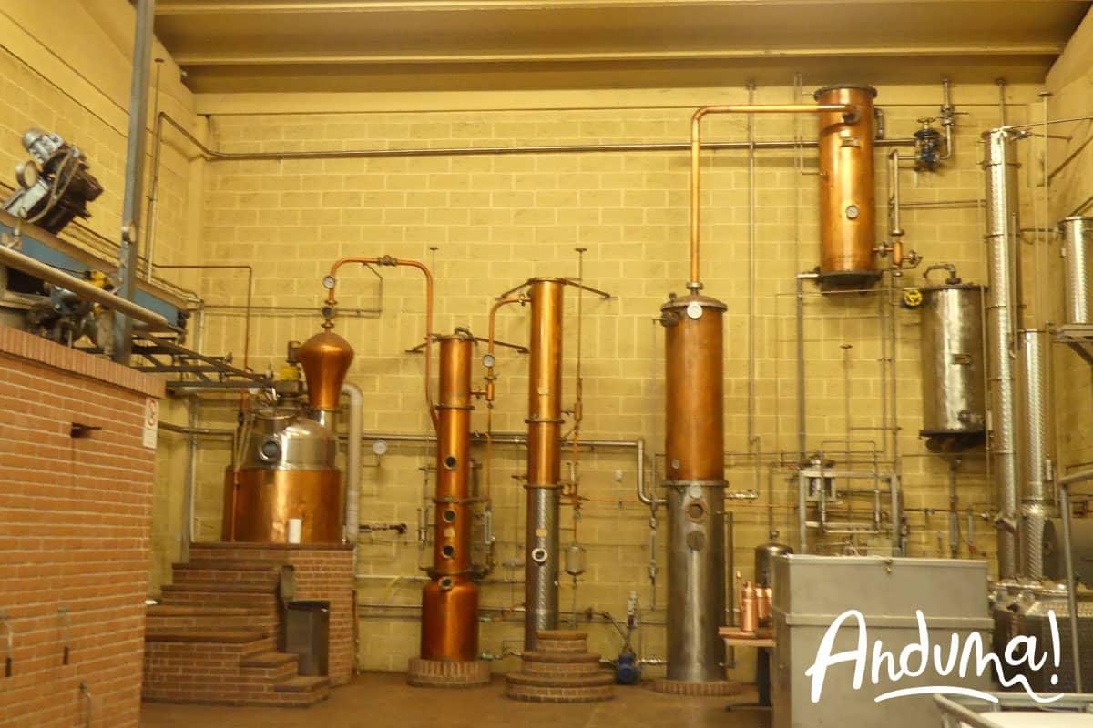 distilleria mazzetti d'altavilla