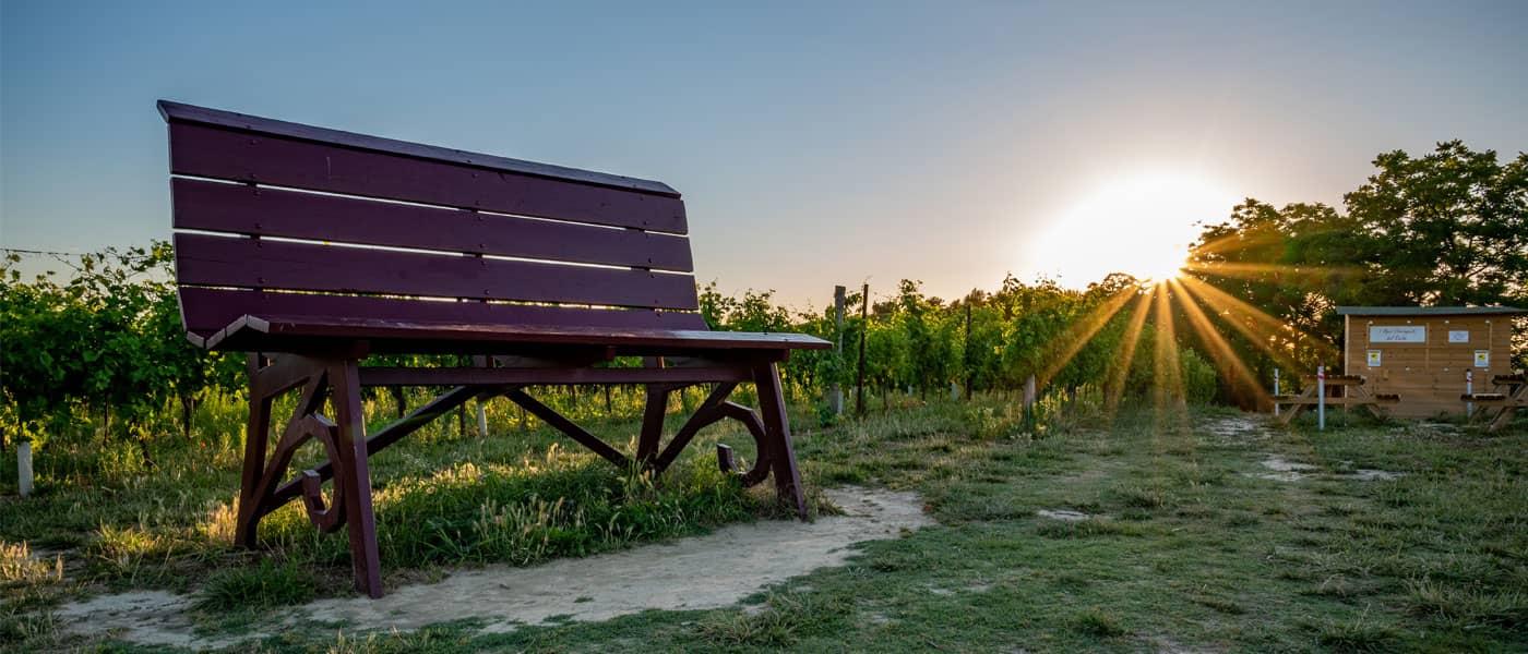 big bench castagnole monferrato