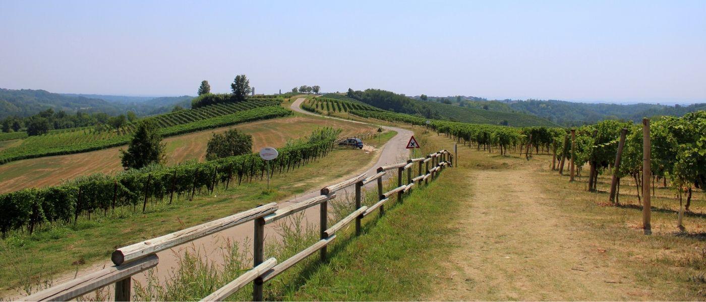 colline del ruche a castagnole monferrato