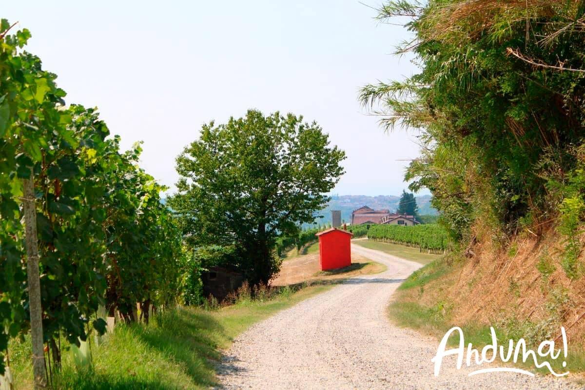 sentiero sulle colline del monferrato con casot rosso